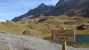 Paso Alpisella